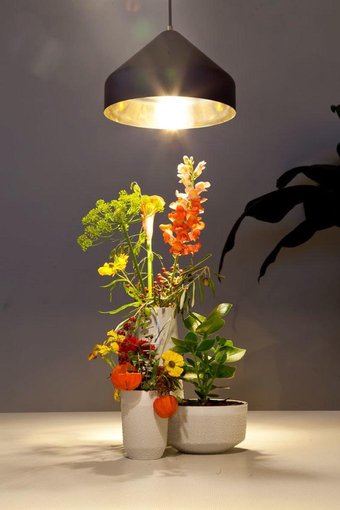 dutch design week business lounge by vij5 2018 image by vij5 img 0887 1